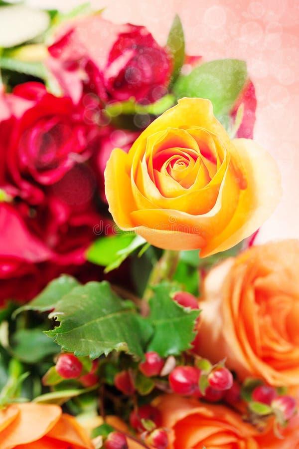Цветастые розы с bokeh стоковая фотография rf