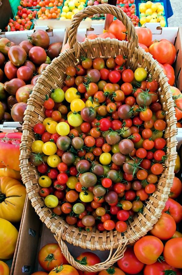 Download цветастые томаты стоковое изображение. изображение насчитывающей питание - 479751