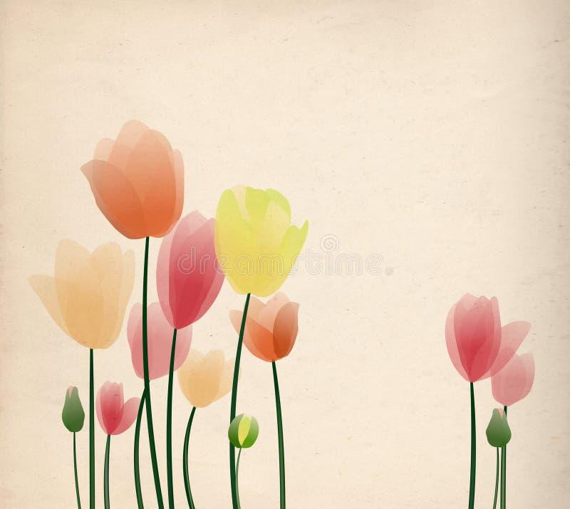 цветастые тюльпаны иллюстрация вектора