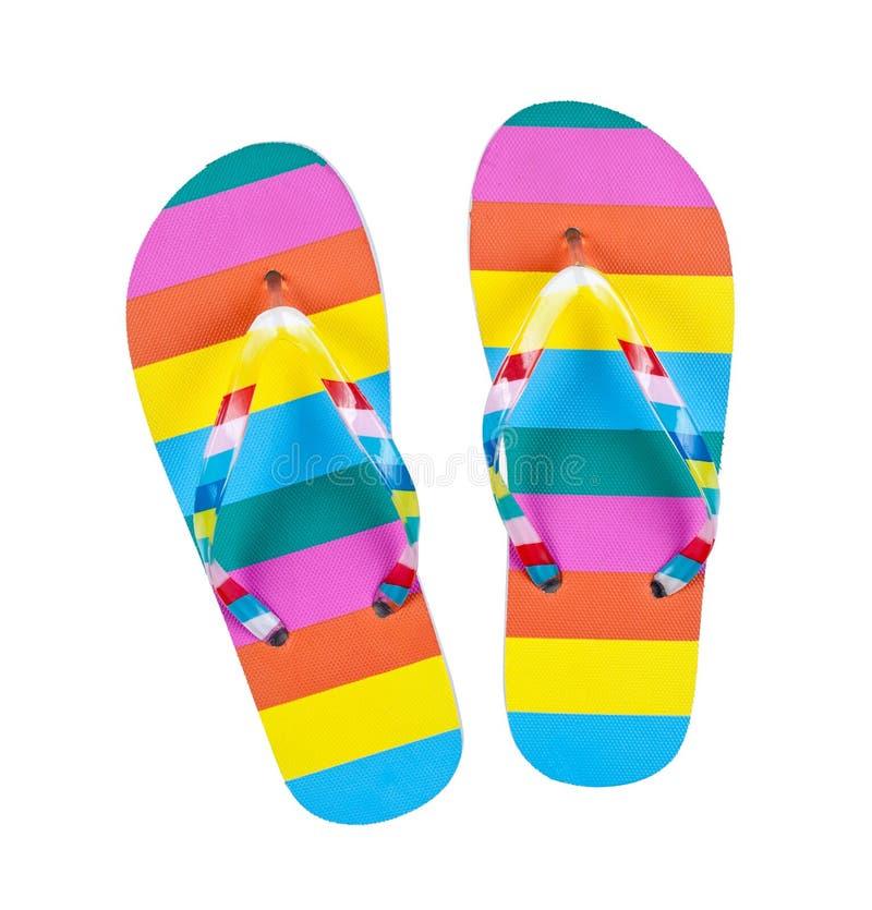 цветастые flops flip изолировали белизну стоковые изображения rf