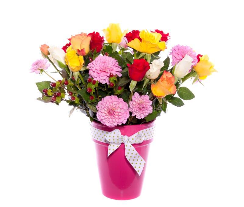 цветастые oses георгина стоковая фотография