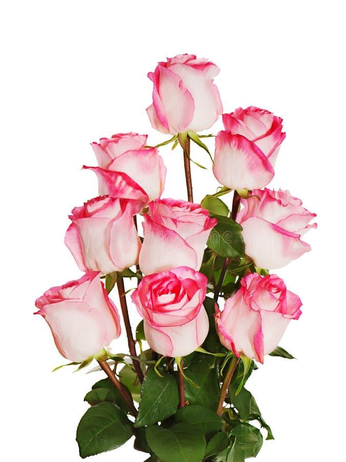 Цветастый букет цветка от роз изолированных на белом backgroun стоковая фотография rf