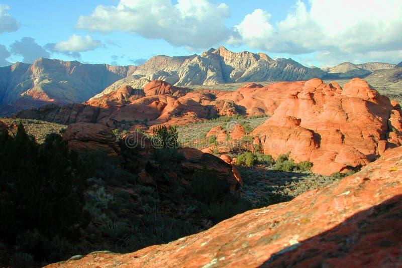 цветастый ландшафт Стоковая Фотография RF