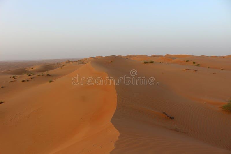 Цвета захода солнца песков Wahiba в Омане стоковые фотографии rf