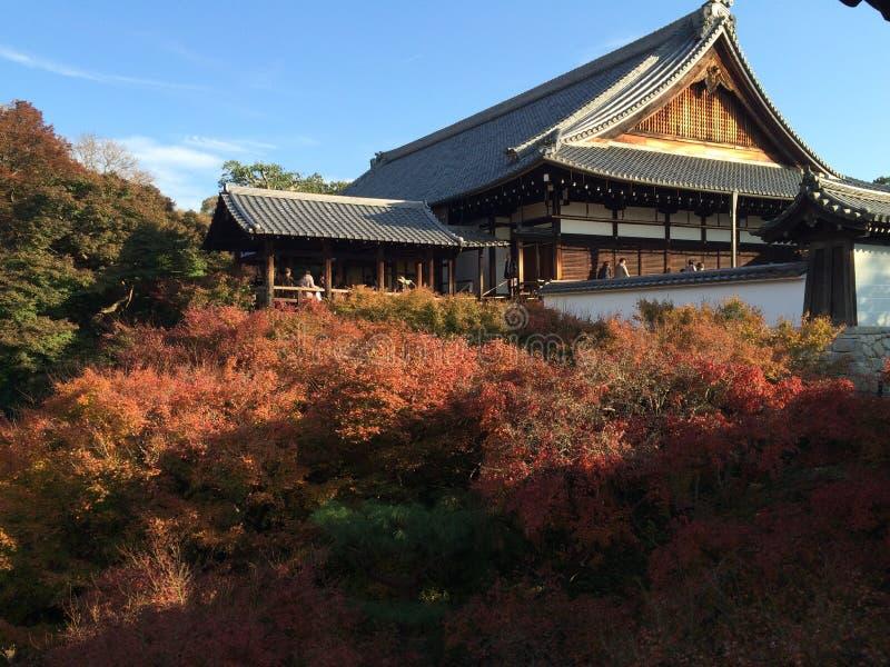 Цвета осени деревьев клена перед виском tofukuji в Киото стоковая фотография rf