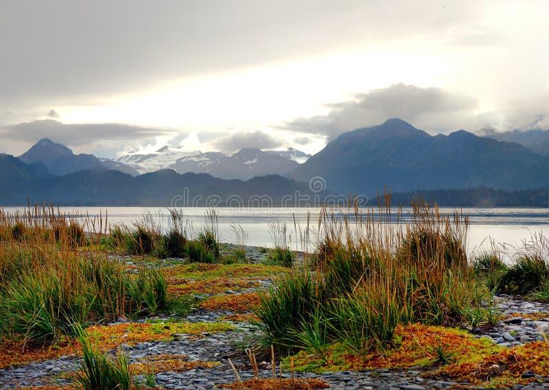 Цвета падения на вертеле почтового голубя, Аляске стоковые фото