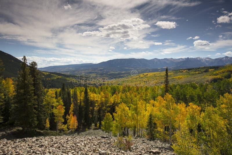 Цвета падения осени и рощи Aspen в пропуске Огайо близко Crested листва Колорадо Butte поворота осин желтая и оранжевая стоковые фотографии rf