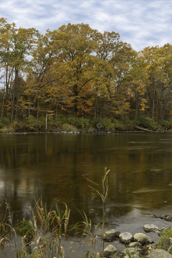 Цвета падения отражая на воде стоковые фото