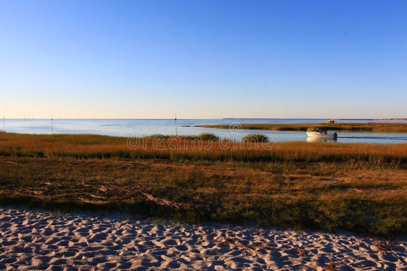 Цвета пляжа осени стоковое изображение rf