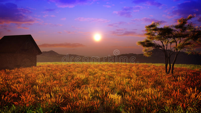 Цвета поля захода солнца иллюстрация вектора