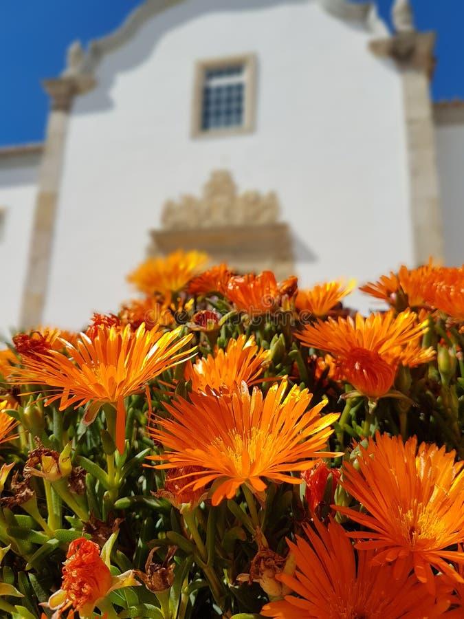 Цветене весны обозрело церковью стоковое фото rf
