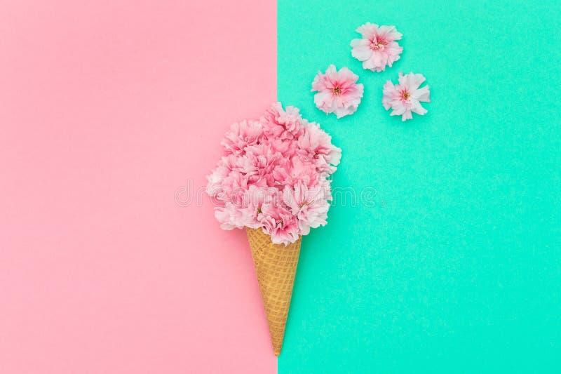 Цветение вишневого дерева в конусе waffle мороженого минимальном стоковые фотографии rf