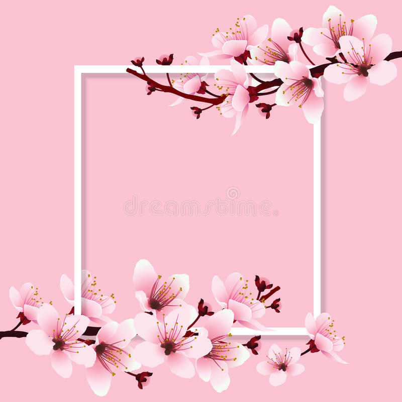 Цветение вишни иллюстрация штока