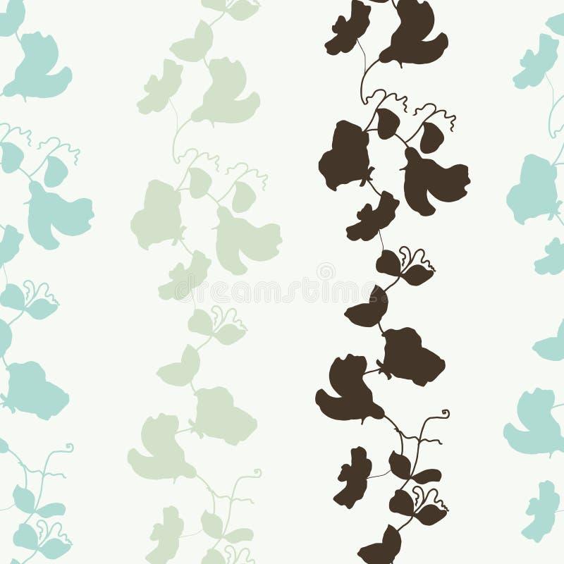 Цветение сладостного гороха флоры сада и vecto картины листьев безшовное иллюстрация вектора