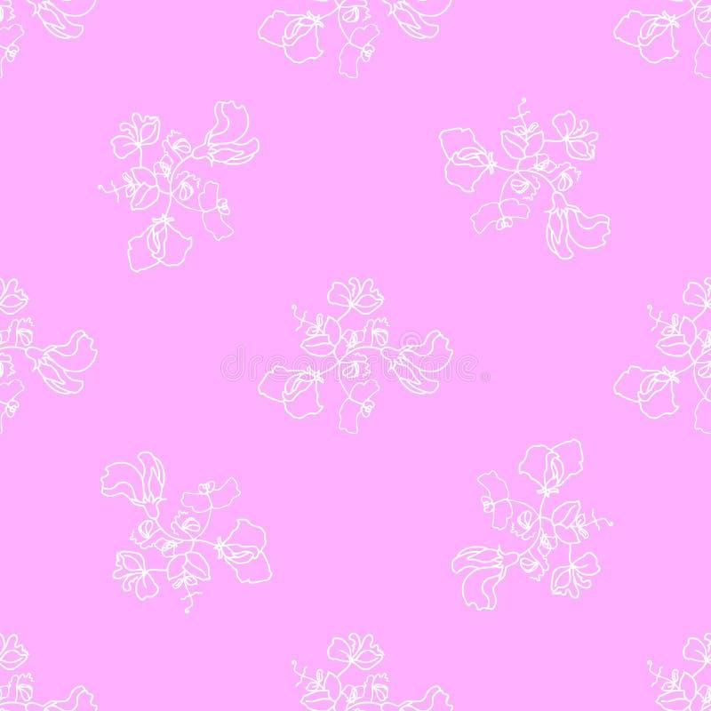 Цветение сладостного гороха флоры сада и vecto картины листьев безшовное иллюстрация штока