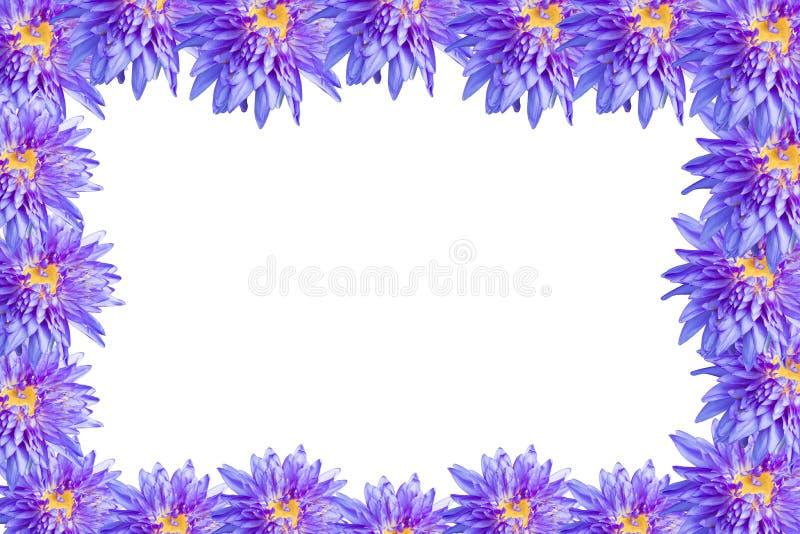 Цветение цветка лотоса бесплатная иллюстрация