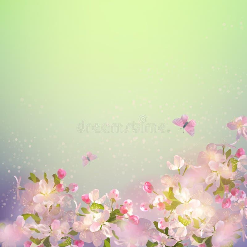 Цветение Яблока весны иллюстрация вектора