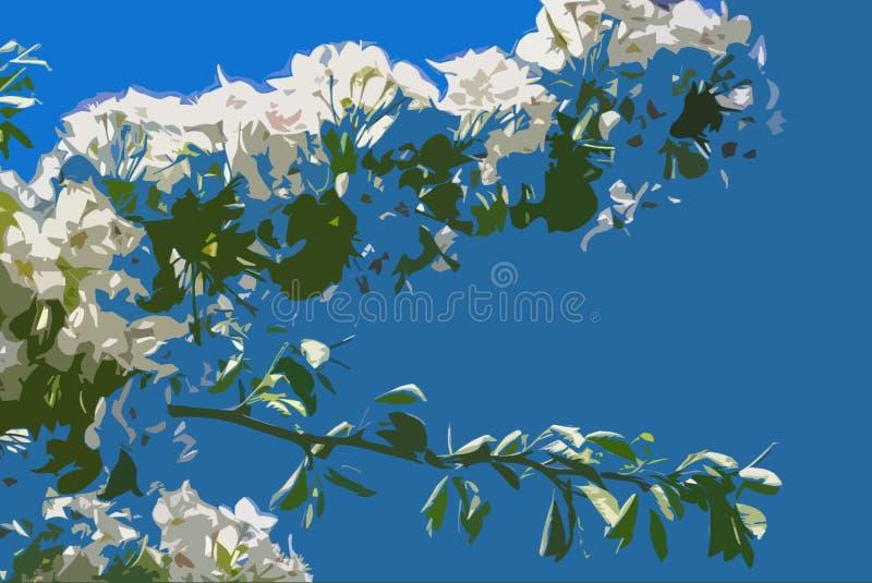 Цветение яблони белое иллюстрация штока