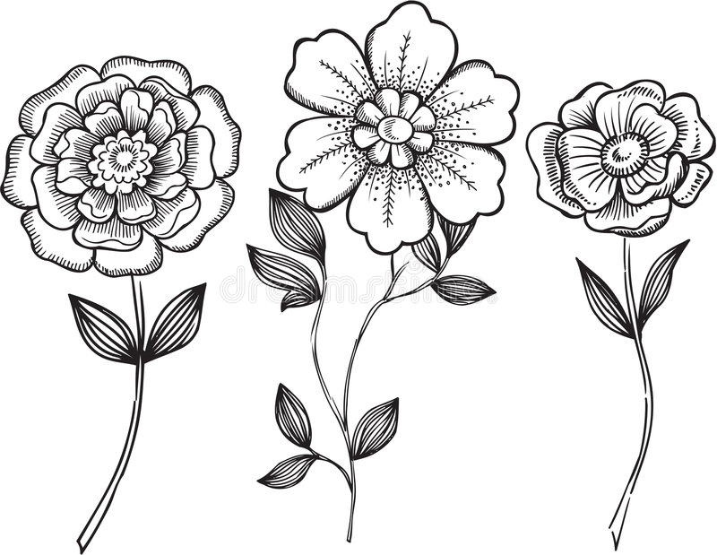 цветет вектор ornamental иллюстрации иллюстрация вектора