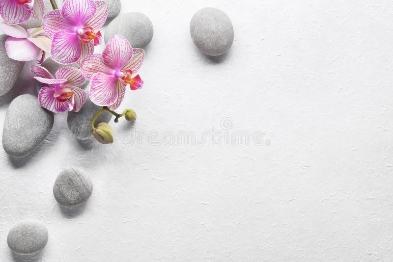 цветет камни спы орхидеи стоковые фото
