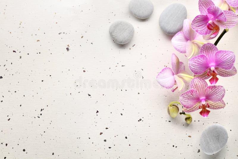 цветет камни спы орхидеи стоковое изображение