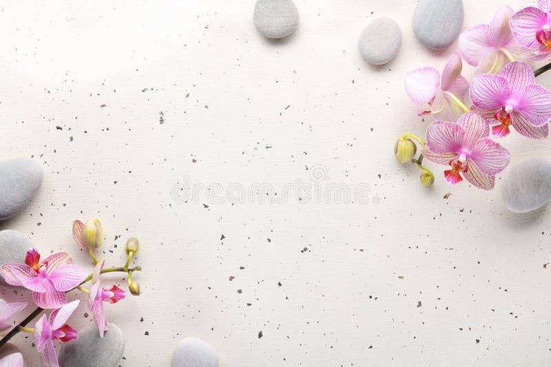 цветет камни спы орхидеи стоковые изображения