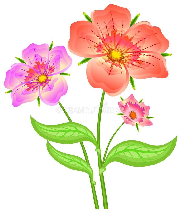 цветет красная весна Стоковое Изображение RF