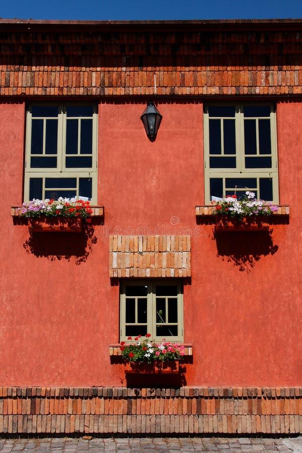 цветет красная стена Стоковые Фото