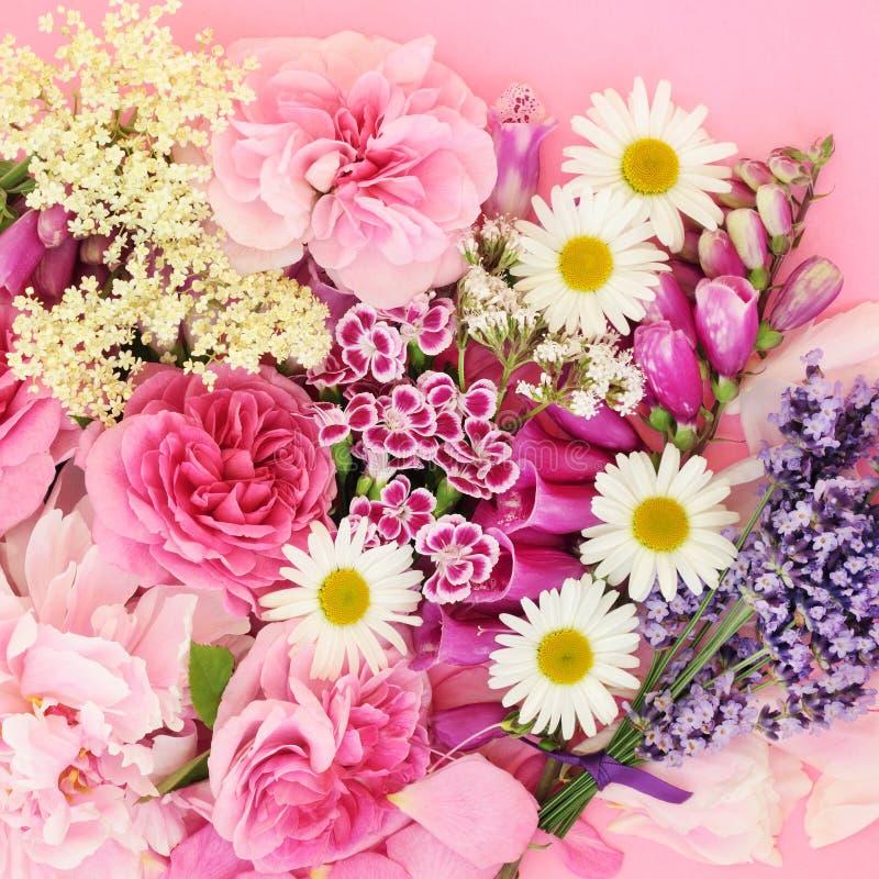 цветет лето трав стоковое фото