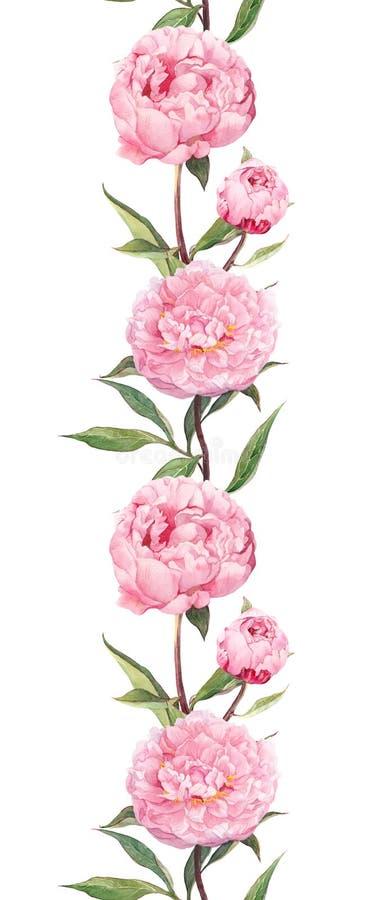 цветет пинк peonies Безшовная флористическая рамка границы акварель иллюстрация штока