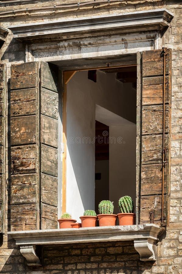 цветет старое окно стоковая фотография rf