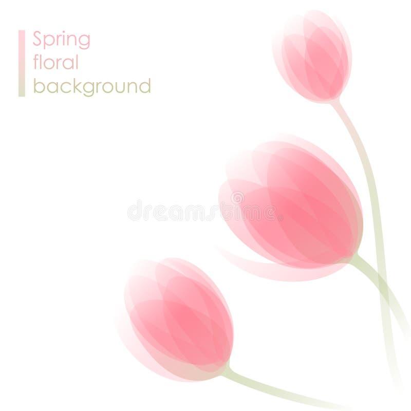 цветет тюльпан бесплатная иллюстрация