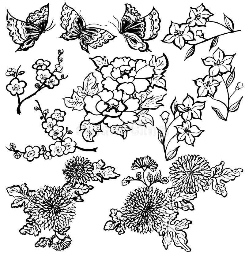 цветет японцы иллюстрация вектора