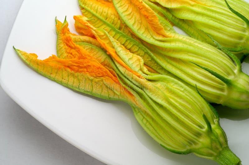 цветет zucchini стоковые изображения rf