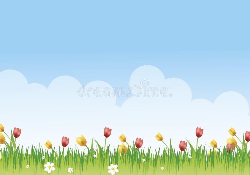 цветистый лужок стоковое изображение