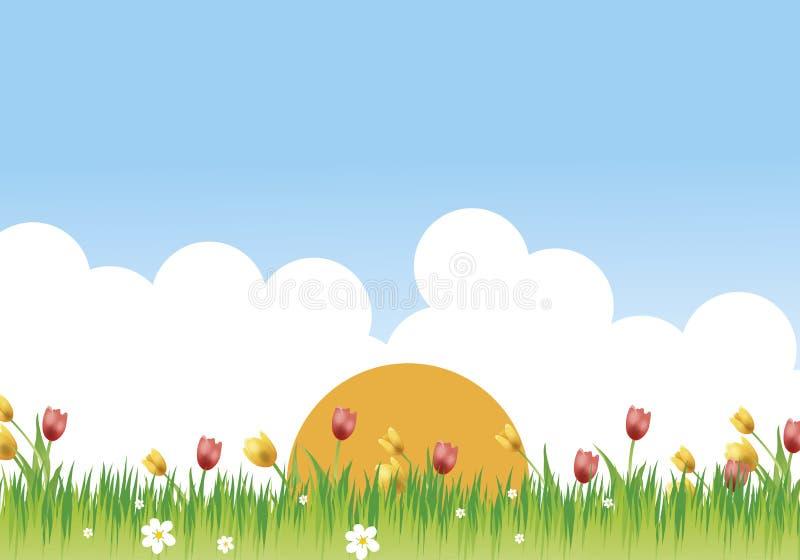 цветистый лужок стоковые фотографии rf