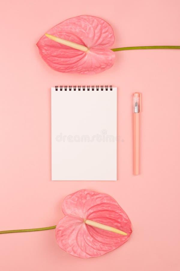 2 цветка и блокнот стоковая фотография