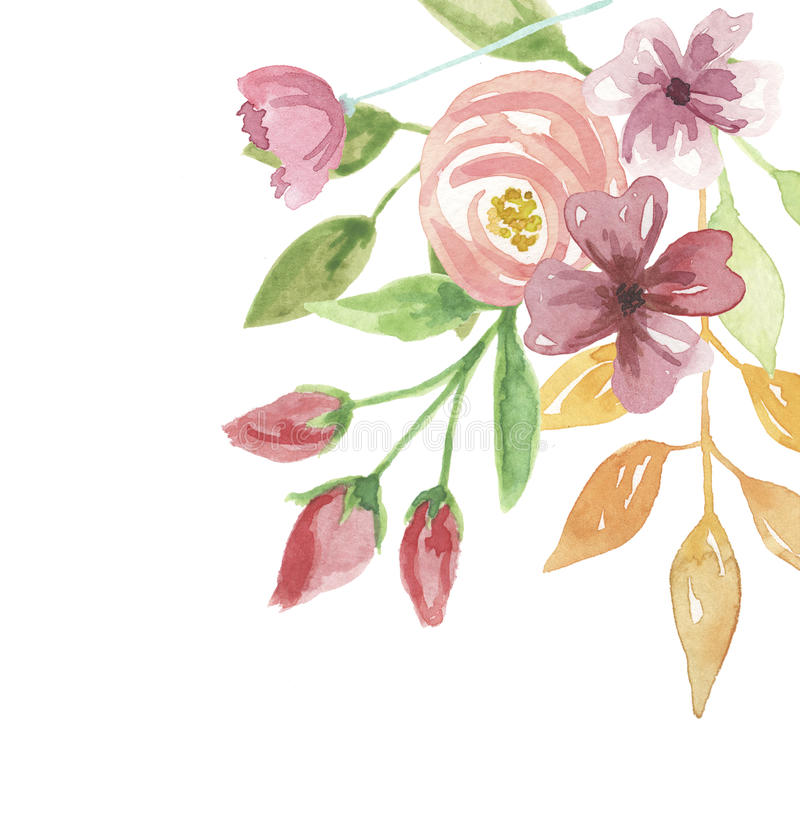 Цветка лета рамки акварели покрашенная рука углового флористическая иллюстрация вектора