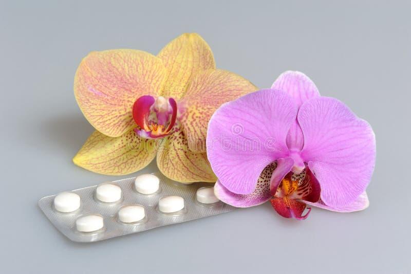 2 цветка орхидеи с фильм-покрытыми таблетками на сером цвете стоковые изображения rf