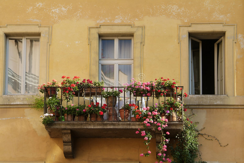 цветки балкона стоковые изображения