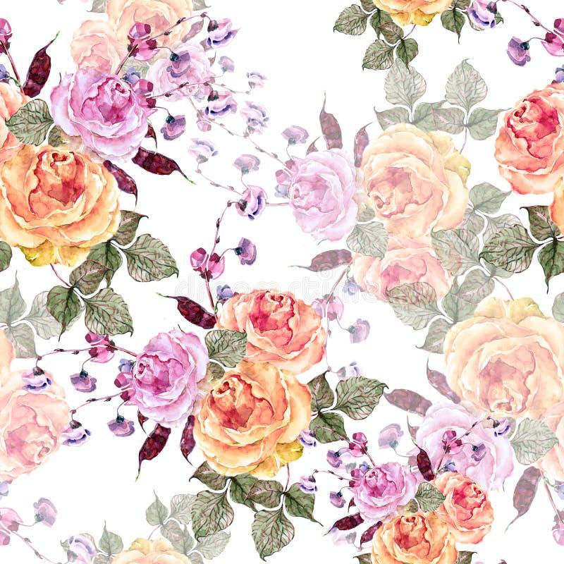 Цветки букета акварели подняли и haricot Безшовная картина на белой предпосылке иллюстрация вектора