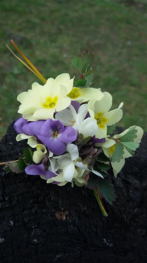 Цветки букета, цветки луга стоковая фотография