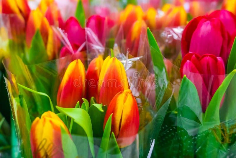 Цветки, букет тюльпанов стоковые изображения rf