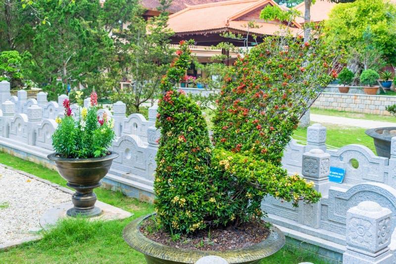 Цветки Буша в форме цыпленка в парке стоковая фотография