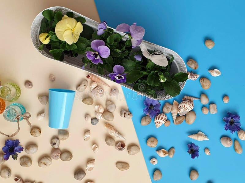 Цветки венок раковин камней моря, гирлянда, крона, chaplet, coronet, circlet цветков звенят greeti голубой предпосылки пляжа абст стоковая фотография rf