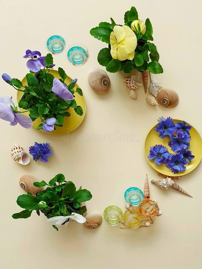 Цветки венок раковин камней моря, гирлянда, крона, chaplet, coronet, circlet цветков звенят greeti голубой предпосылки пляжа абст стоковые фотографии rf