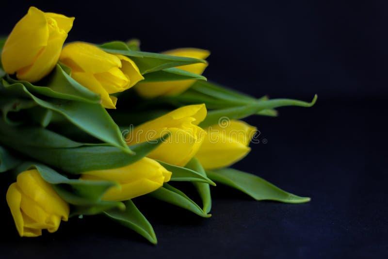 Цветки весны - концепция идеальная для социальных средств массовой информации стоковое изображение
