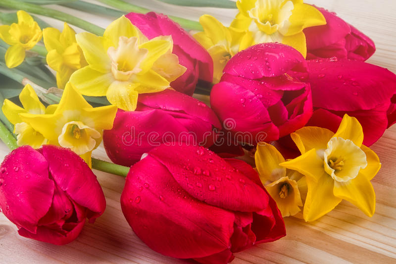 Цветки весны дня матерей стоковое фото rf