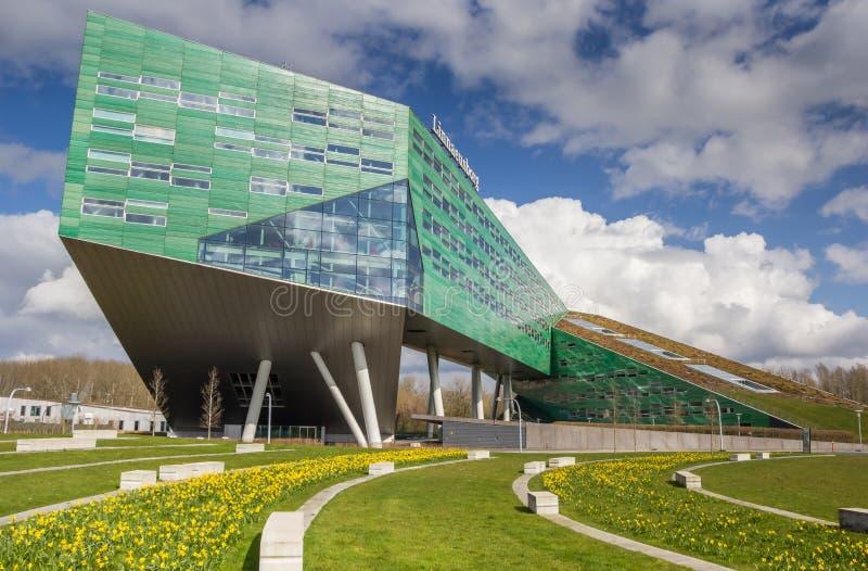 Цветки весны перед университетом в Groningen стоковые изображения