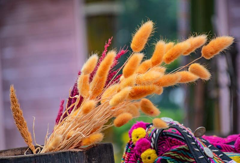 цветки высушенные корзиной стоковое изображение rf